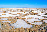 Bristol Dry Lake in the Mojave Desert, near Amboy, California, USA - Salt Bed at Salt Mining Area, after a Heavy Rainfall