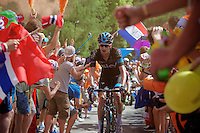 Dutchie Wout Poels (NLD/SKY) experiencing the craziness at the Dutch Corner (nr7) up Alpe d'Huez<br /> <br /> stage 20: Modane Valfréjus - Alpe d'Huez (111km)<br /> 2015 Tour de France