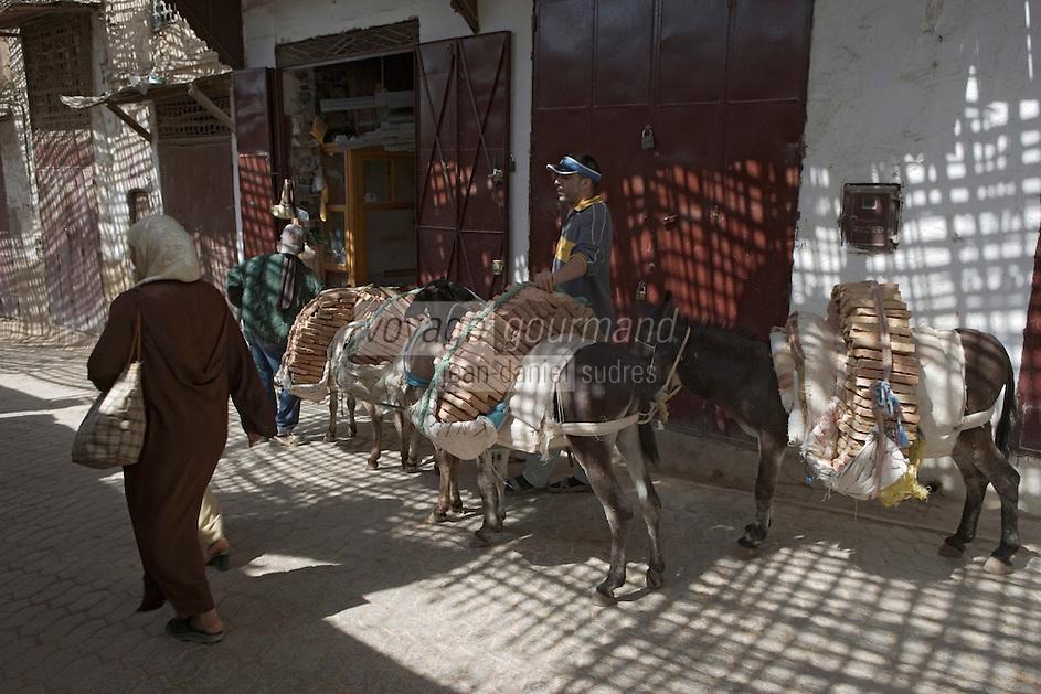 Afrique/Afrique du Nord/Maroc/Fèz: Dans la médina les anes tranportent des chargements de briques