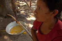 India Macuxi extrai o tucupí durante o processo de preparação da farinha de mandioca.<br /> Comunidade indígena  Macuxí, Raposa Serra do Sol.<br /> Normandia, Roraima, Brasil.<br /> Foto Paulo Santos<br /> <br /> 2004