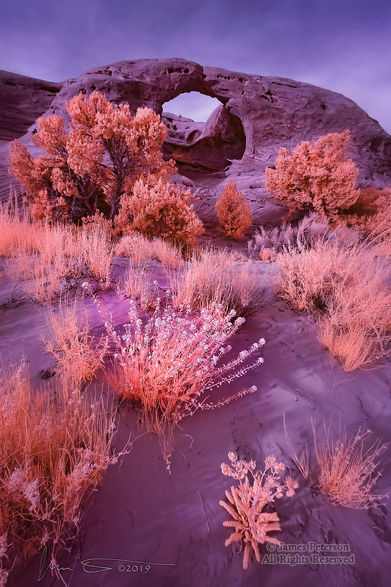 Honeymoon Arch, Mystery Valley, Arizona (Infrared) ©2019 James D Peterson.  This area, in the Navajo Nation, is just south of Monument Valley, and nonmembers of the tribe can only enter it with a licensed guide.  It is full of Southwestern natural wonders, and my infrared camera knows just what to do with them.