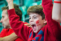 A young boy with a dragon painted on his fear cheers in the UEFA EURO 2016 fan zone set up in the Principality Stadium, Cardiff, Wales, Britain, 6 July 2016, watching Portugal vs Wales EURO 2016 semi-final match. Athena Picture Agency/ALED LLYWELYN/ATHENA PICTURES