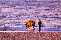 Woman walking alongsidea horse off sunset beach, Oahu