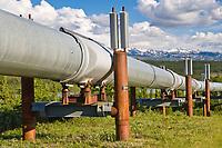 Trans Alaska oil pipeline traverses the tundra in the Alaska Range, south of delta junction.