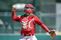 Washington Nationals catcher Cole Leonida (3) during practice before a minor league spring training game against the Atlanta Braves on March 26, 2014 at Wide World of Sports in Orlando, Florida.  (Mike Janes/Four Seam Images)