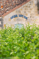 Chateau Lafleur Saint Jean seen across the vineyards Pomerol Bordeaux Gironde Aquitaine France