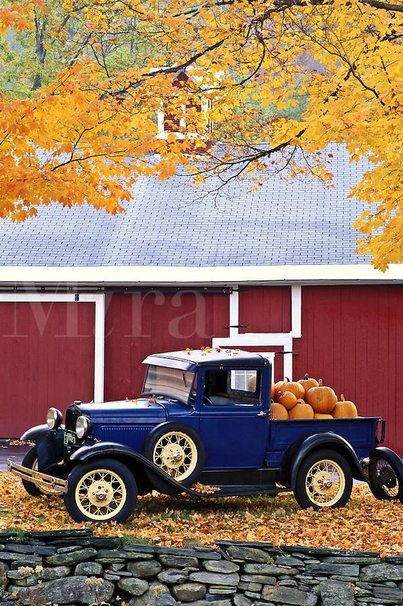Antique truck with pumpkins in Autumn
