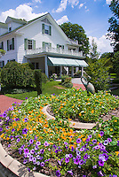 House, nasturtiums, petunias, blue skies, clouds, sunny, bird ornament statutes, heirloom and old-fashioned plants flowers, using old fountain recycled as planter