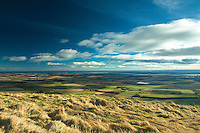 The Tay Estuary from Craigowl, The Sidlaws near Dundee, Tayside