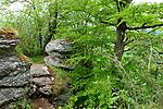 Europa, DEU, Deutschland, Baden-Wuerttemberg, Schwaebische Alb, Bad Urach, Albtrauf, Typische Landschaft, Felsen, Natur, Umwelt, Landschaft, Jahreszeiten, Stimmungen, Landschaftsfotografie, Landschaften, Landschaftsphoto, Landschaftsphotographie, <br /> <br /> [Fuer die Nutzung gelten die jeweils gueltigen Allgemeinen Liefer-und Geschaeftsbedingungen. Nutzung nur gegen Verwendungsmeldung und Nachweis. Download der AGB unter http://www.image-box.com oder werden auf Anfrage zugesendet. Freigabe ist vorher erforderlich. Jede Nutzung des Fotos ist honorarpflichtig gemaess derzeit gueltiger MFM Liste - Kontakt, Uwe Schmid-Fotografie, Duisburg, Tel. (+49).2065.677997, ..archiv@image-box.com, www.image-box.com]