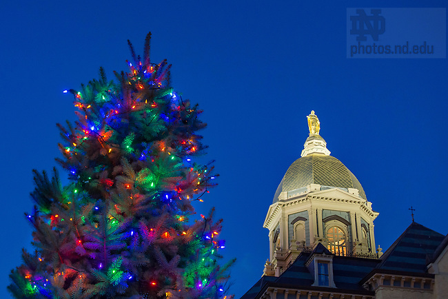 December 26, 2016; Dome and Christmas tree (Photo by Matt Cashore/University of Notre Dame)