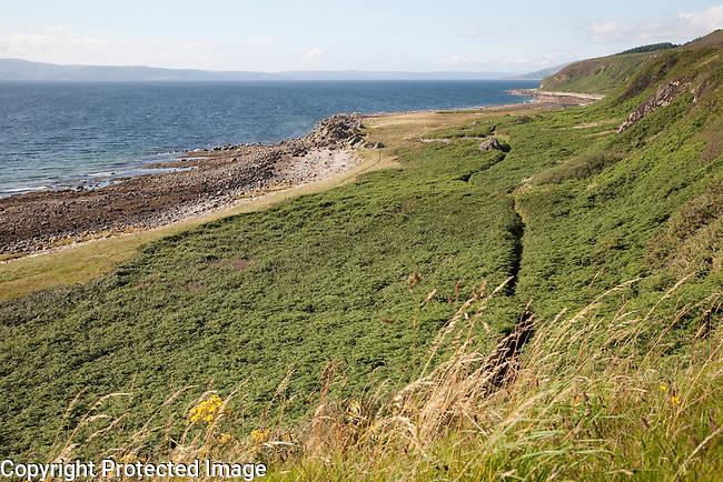 Coastal Footpath near Drumadoon Point, Isle of Arran, Scotland