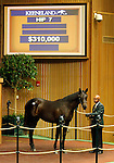 September 14, 2015: Hip 7 More Than Ready - Union Flag filly consigned by Pope McLean.  Candice Chavez/ESW/CSM