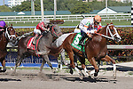 HALLANDALE BEACH, FL - JANUARY 21:  #5 Early Entry (FL) with jockey Paco Lopez up wins the Sunshine Millions Sprint at Gulfstream Park on January 21, 2017 in Hallandale Beach, Florida. (Photo by Liz Lamont/Eclipse Sportswire/Getty Images)