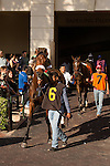 HALLANDALE BEACH, FL - FEBRUARY 04: Scenes from Gulfstream Park,  at Gulfstream Park, Hallandale Beach, FL. (Photo by Arron Haggart/Eclipse Sportswire/Getty Images)