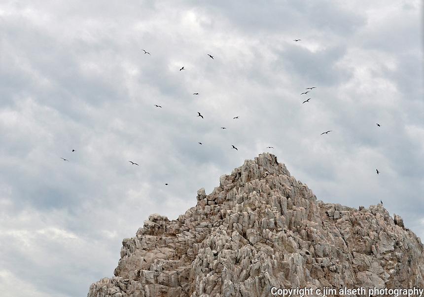 The Baja Peninsula in the Los Cabos/San Jose del Cabo area is an adventurer's delight...