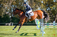 NZL-Helen Ensor rides Takapoto India. Class 24: Horse 1.00m Ranking Class. 2021 NZL-Easter Jumping Festival presented by McIntosh Global Equestrian and Equestrian Entries. NEC Taupo. Saturday 3 April. Copyright Photo: Libby Law Photography