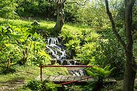 France, Manche (50), Saint-Germain-des-Vaux, Jardin en Hommage à Jacques Prévert, petites cascades en haut du jardin