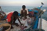 preparing fish on the boat Niya (espoir)