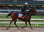 October 28, 2015: Bawina, trained by Carlos Laffon-Parias, and owned by Wertheimer et Frere, is cross entered in the Breeder's Cup Filly & Mare Turf $2,000,000 and has second preference in the Breeder's Cup Mile $2,000,000. Candice Chavez/ESW/CSM