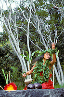 Hawaiian hula dancer performing in honor of Laka