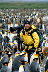 Art Wolfe surrounded by king penguins, South Georgia Island