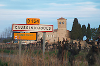 Caussiniojouls village with vines and church. Faugeres. Languedoc. France. Europe.