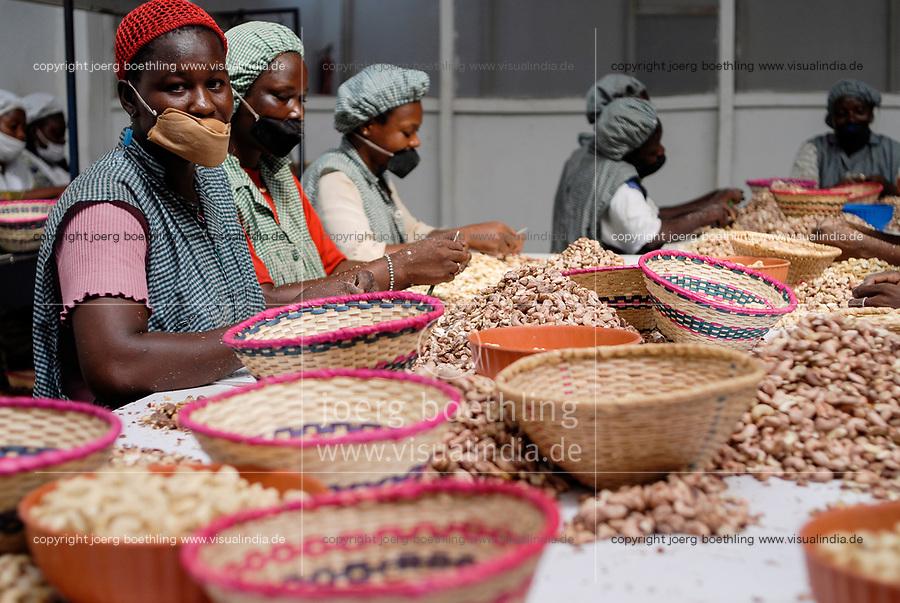 BURKINA FASO, Banfora , Sotria B Sarl factory for cashew kernel processing, women peel, clean and sort cashew nuts / Fabrik zur Verarbeitung von Kaschukerne , Frauen schaelen und sortieren Kaschu Nuesse