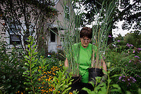 Jennifer Wilson Pines plants natives to her home garden with a focus on attracting birds and wildlife. She is partial to shrubs that berry, like aronia, amelanchior, blueberry and <br /> blackberry to attract fruit-eating species like catbird, robin,mockingbird and oriole. She also planted monarda to attract hummingbirds, and goldenrod, aster, joe pye weed, swamp milkweed and butterfly weed to attract beneficial insects and butterflies. <br /> Jennifer was instrumental in having a native plant display garden installed in Port Washington by the Manhasset Bay Protection Committee to encourage use of native plants in home <br /> landscaping, and has worked with The Nature Conservancy to design a native plant garden for our Uplands property. wrote a successful small grant for a native plant restoration at <br /> Garvies Point Museum and Preserve, a Nassau County site, that required over 650 volunteer hours to clear of a massive infestation of rosa multiflora, Norway maple, garlic mustard and <br /> burning bush (chain saws and pick axes), plant, and maintain over the course of a year.