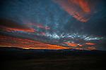 Richland/Harris Ranch