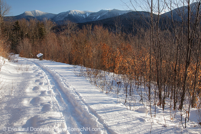 The Forest Discovery Trail in Lincoln, New Hampshire during the winter months. This trail is a living classroom in ecological management in the White Mountain National Forest.