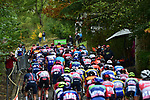 The peloton during La Fleche Wallonne 2020, running 202km from Herve to Mur de Huy, Belgium. 30th September 2020.<br /> Picture: ASO/Gautier Demouveaux | Cyclefile<br /> All photos usage must carry mandatory copyright credit (© Cyclefile | ASO/Gautier Demouveaux)
