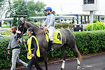 Don't Leave Me(4) with Jockey Eurico Rosa Da Silva aboard at  the Natalma Stakes at Woodbine Race Course in Toronto, Canada on September 13, 2014 with Jockey Patrick Husbands aboard.