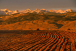 Plowed field and mountains at sunrise, Boulder, Colorado, .  John leads private photo tours in Boulder and throughout Colorado. Year-round Boulder photo tours.