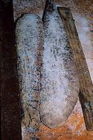 Bottarga, salted tuna's eggs during the processing, Carloforte, San Pietro Island, Sardinia, Italy, Tyrrhenian Sea, Mediterranean