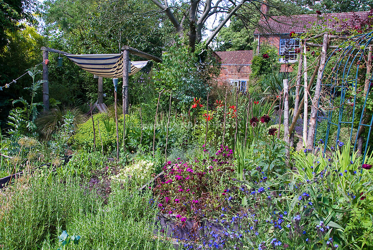 Cottage garden with Alchemilla, trellis arches for climbing vines, brick house, mulch pathway, flowers, shrubs, trees, sky, wide view