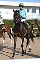 Horse Racing: Kyoto 10R Elfin Stakes