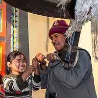 Bodhnath, Nepal.  Ringing Giant Bell to Celebrate Tibetan New Year.