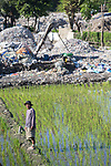 21 May 2019, Bangun Village,East Java, Indonesia: Local rice farmer Tori (bottom of frame with silouette) stands in his paddy that is surrounded by a plastic rubbish dump in Bangun Village outside Surabaya, Indonesia. Millions of tonnes of recyclable plastic trash from Australia and Europe is dumped for rag pickers to separate and sort. The plastics are used to fuel fires at local tofu factories among other industries. Australia is illegally sending non recyclable trash hidden within this lode and the Indonesian Government is cracking down on the practice and preparing to refuse to take Australia's rubbish that is creating environmental and health issues locally. Picture by Graham Crouch/The Australian