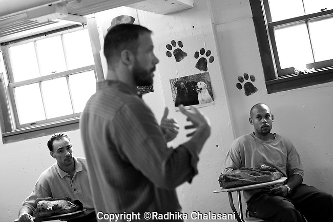 BEACON, NEW YORK:  Carl Rothe discusses how to get the puppies to respond to commands during class for the Puppies Behind Bars (PPB) program at Fishkill Correctional Facility as prisoners Jesse (L) and Ian (R) listen. The PPB program works with prison inmates in New York, New Jersey, and Connecticut to train service dogs, including ones who help injured soldiers and those suffering from post traumatic stress. Fishkill Correctional Facility is a medium security prison in New York with 22 men in the puppy program.