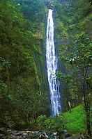 Beautiful long waterfall off the trail of Kaupo gap, on the back side of Haleakala national park, Maui