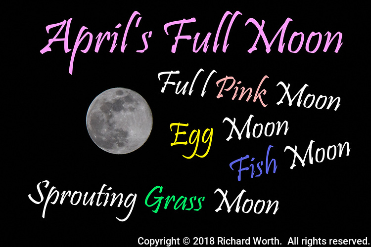 """From the Old Farmer's Almanac web site:  April's Full Moon, the Full Pink Moon, heralds the appearance of the """"moss pink,"""" or wild ground phlox—one of the first spring flowers. It is also known as the Sprouting Grass Moon, the Egg Moon, and the Fish Moon.<br /> <br /> These names were not invented by The Old Farmer's Almanac. They were used by early Colonial Americans—who learned the names from the local Native Americans; time was not recorded by using the months of the Julian or Gregorian calendar. Many tribes kept track of time by observing the seasons and lunar months, although there was much variability. The name itself usually described some activity that occurred during that time in their location."""