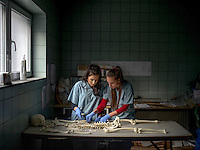 Victoria Amina-Dautovic (left) and Bojana Tomasevic, staff at an International Commission on Missing Persons (ICMP) mortuary facility, train using a synthetic skeleton.