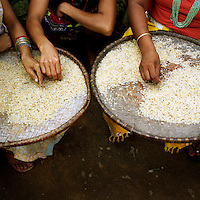 Cleaning rice at a Bhutanese refugee settlement...