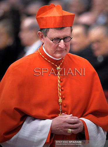 German cardinal Rainer Maria Woelki , Pope Benedict XVI leads the Consistory where he will appoint 22 new cardinals on February 18, 2012 at St Peter's basilica at the Vatican.