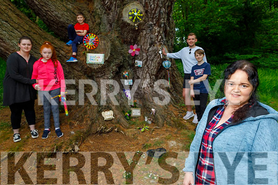 Standing at Tonya's Trove in memory of the late Tonya O'Connor in Killeen Woods on Saturday. <br /> Front  Laura O'Connor (Tonya's twin sister). <br /> Back l to r: Lauren and Kayleigh Smith, Dwayne Conway, Donncha O'Brien and Dylan O'Connor.