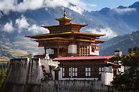 Punakha Dzong and the Himalayan foothills