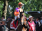 June 7, 2014: Medal Count, Robby Albarado up, is in the paddock before the Belmont Stakes. Tonalist, trained by Christophe Clement and ridden by Joel Rosario wins the 146th running of the Grade I Belmont Stakes at Belmont Park , Elmont, NY.   ©Joan Fairman Kanes/ESW/CSM