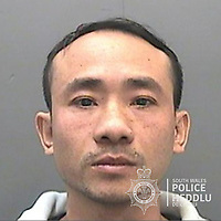 """Pictured: Xuan Le Truong<br /> Re: The ringleaders of a Vietnamese crime gang have been jailed after police seized 2.5 tonnes of cannabis worth about £6m in raids across south Wales.<br /> A total of 21 people have been sentenced in a case going back to 2017 after dozens of cannabis factories were uncovered across the region and beyond.<br /> One of the defendants initially claimed to be 14 years old, but police proved he was actually aged 26.<br /> The gang leaders were sentenced at Merthyr Tydfil Crown Court on Friday.<br /> Bang Xuan Luong, 44, was sentenced to eight years in prison. His partner, 42-year-old Vu Thi Thu Thuy, was jailed for six years and Tuan Anh Pham, 20, who was described in court as the """"IT Man"""", received five years.<br /> An investigation into a cannabis factory in the Cynon Valley led officers from South Wales Police's Force Intelligence and Organised Crime Unit (FIOCU) to a string of others across south Wales, Gwent and Dyfed-Powys force areas."""