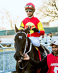 MARCH 09, 2019 : Post parade Family Biz and Kendrick Carmouche, the Gotham Stakes for 3-year olds at Aqueduct Racetrack on March  09, 2019 in Ozone Park, NY.  Sue Kawczynski/ESW/CSM